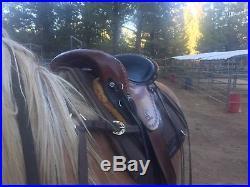 15 Synergist Endurance / Western Trail Synergist Saddle Lightweight
