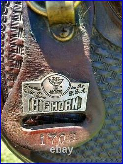 17 Big Horn Tennessee Walking Horse Gaited Saddle