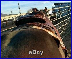 Circle Y Western Pleasure Equitation Show Brown 16 Western Equestrian Saddle