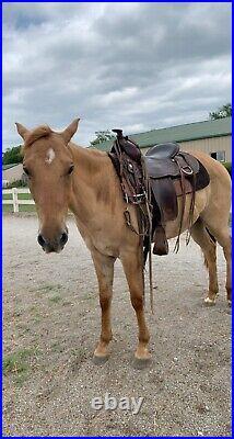 Tex Tan Flex Tex Saddle
